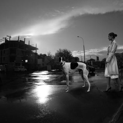 Tatarak_Foto_Studio_Projekty_artystyczne